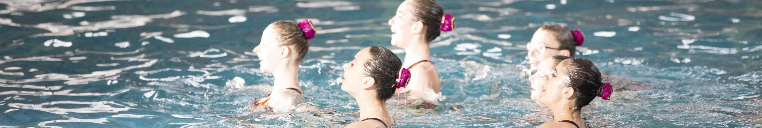 Brussels Aquatic Synchro Swimming